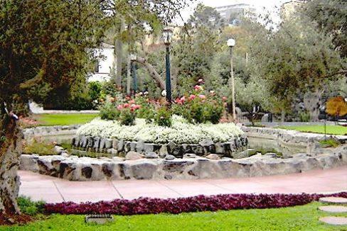 Parque-Olivar